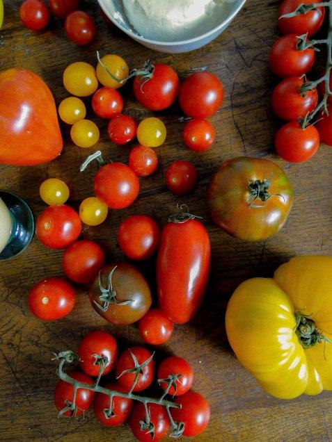 tomato tart-9