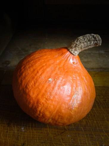 pumpkin gratin & pork filet-11