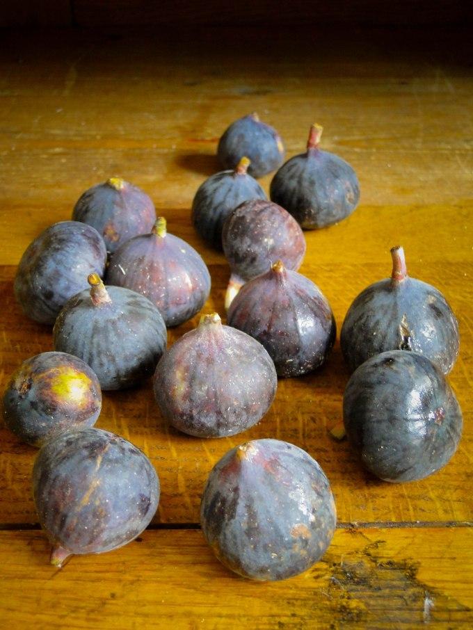 figs-3