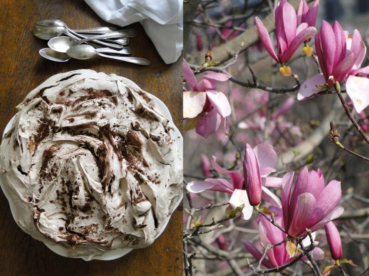 merveilleux&magnolia19