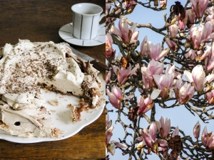 merveilleux&magnolia23