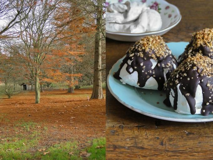 meringue&browntree