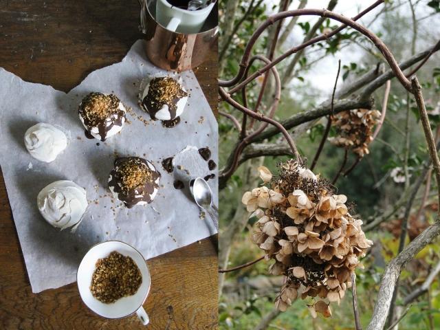 meringues&hydrangea