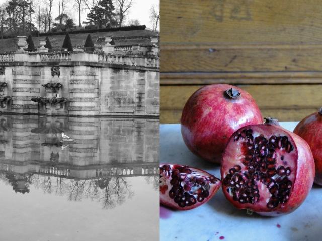 pomegranates&fountain