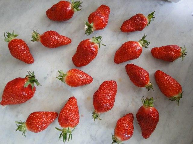 strawberriy tartlets-14