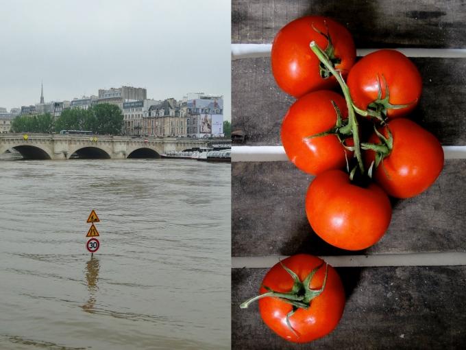 seine & tomate 5