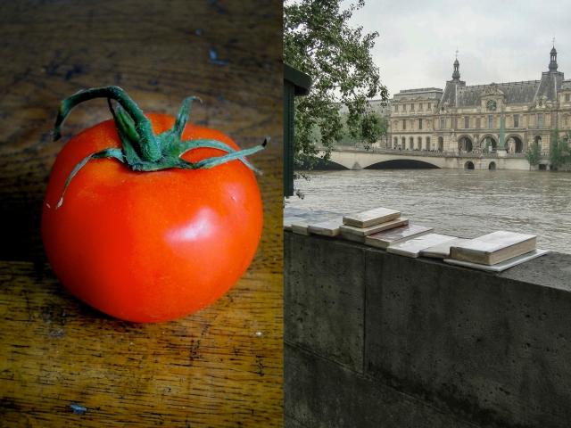 seine & tomate6