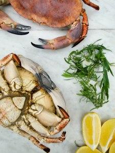 crab-12