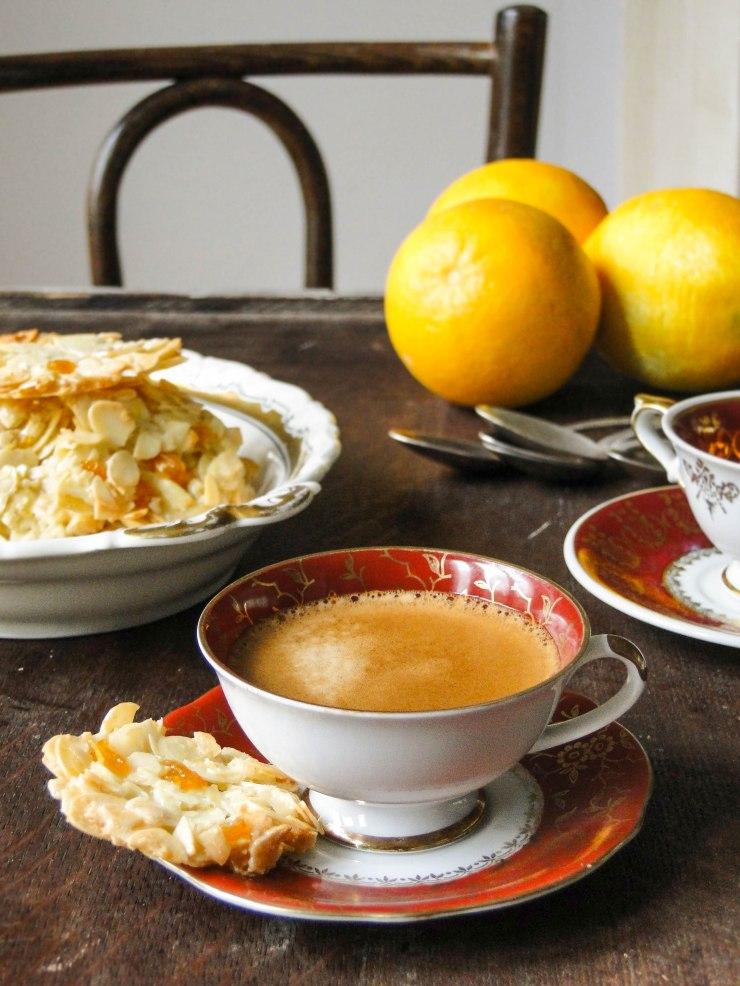 apricot-almond-florentine-cookies-8
