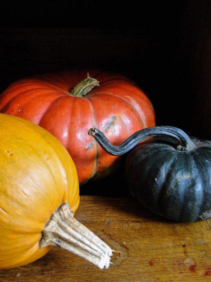 pumpkins-4